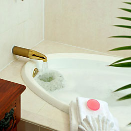 Guest Amenities 19  shampoo263 St. Francis Inn St. Augustine Bed and Breakfast