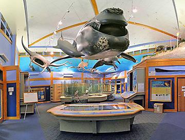 Guana Tolomato Matanzas Reserve GTM research building exhibits