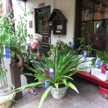 gardener with winning plants