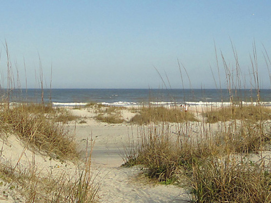 sand dunes at St. Augustine Beach