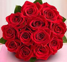 gift of a dozen roses